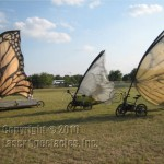 Butterfly Bicycles