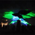 Laser Falcon